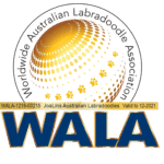 JoaLins WALA Logo 21 (002)