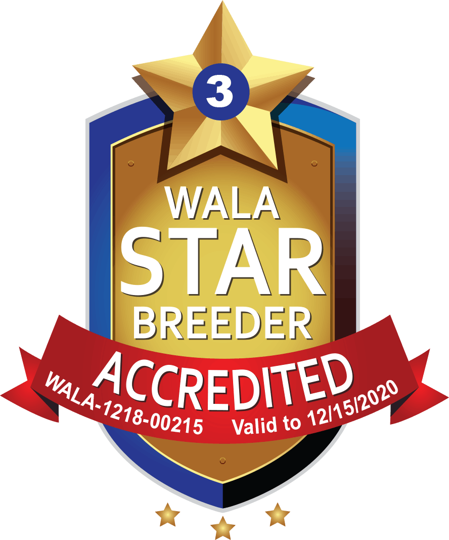 WALA accredited breeder shield