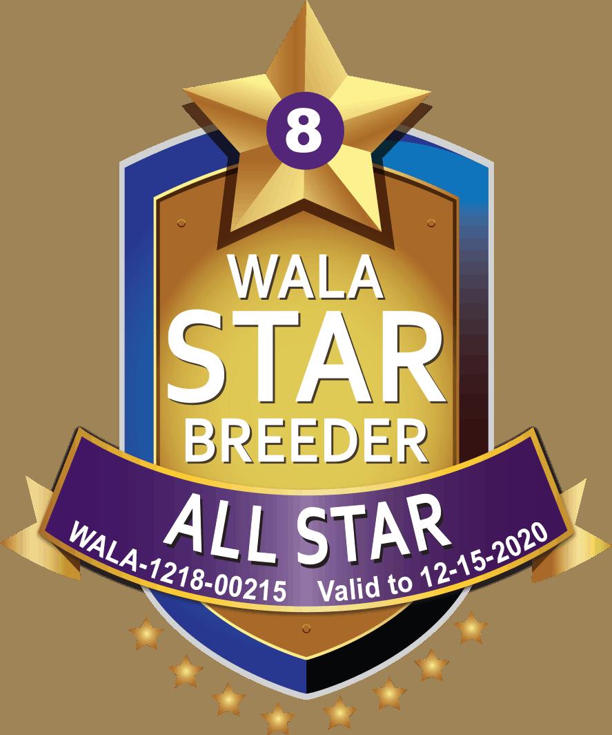 WALA all star breeder shield