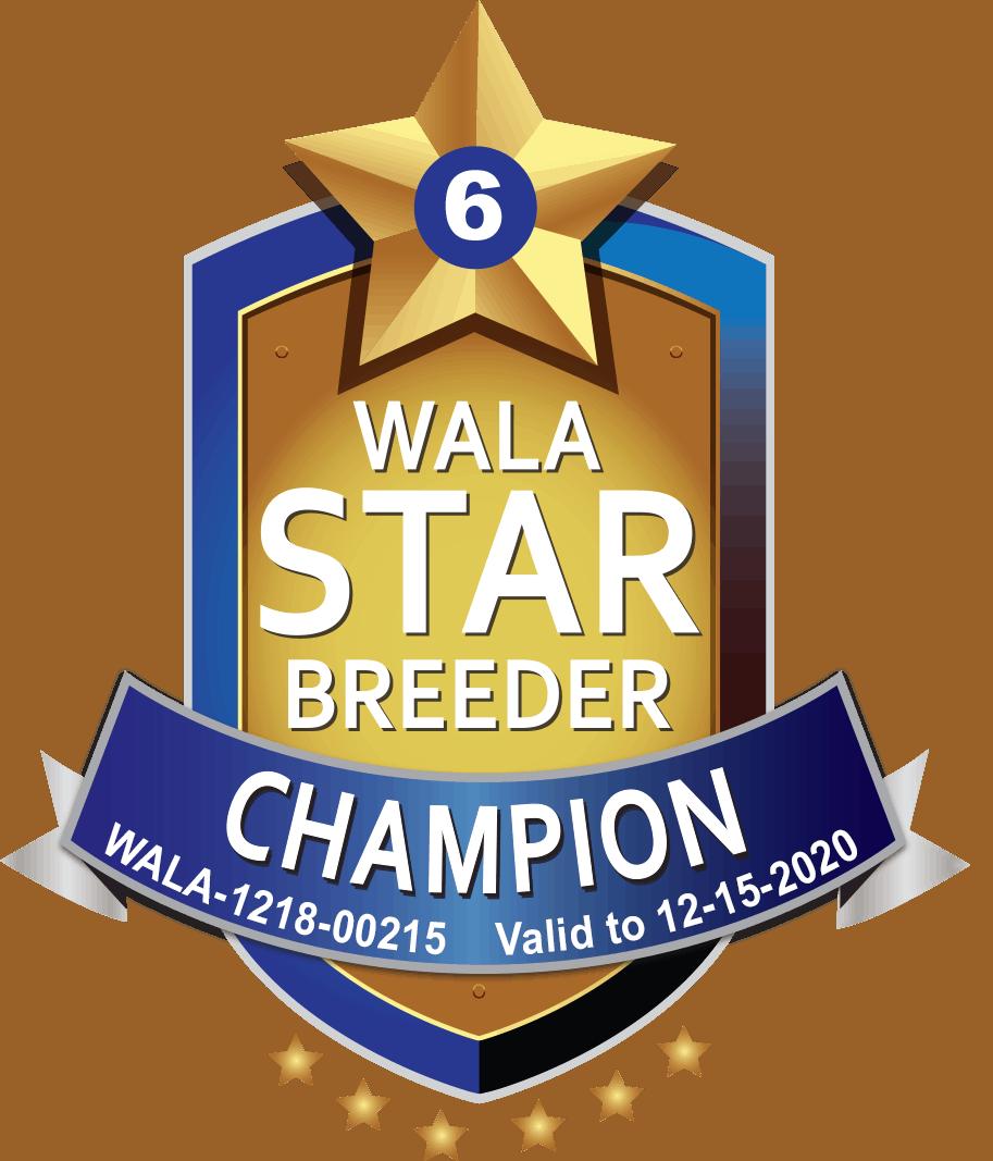 WALA champion breeder shield